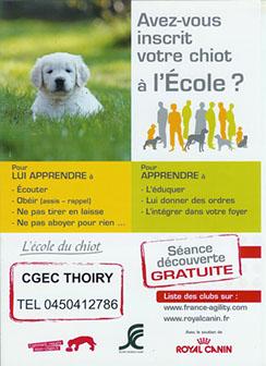 affiche-ecole-du-chiot
