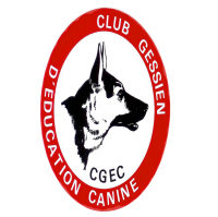 cropped-logo-cgec-test-transparent-aplati-2.png